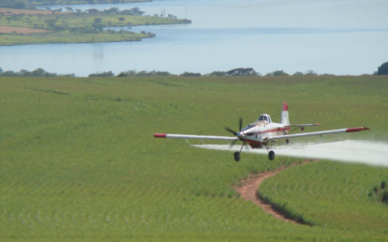 Zivilgesellschaft fordert Stopp von giftigen Pestizideinsätzen in Brasilien